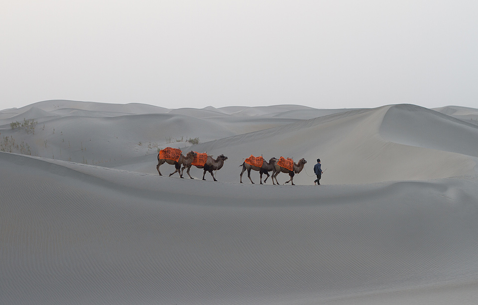 Phil Akashi Xinjiang Taklamakan Desert Legend of the Dragon Aerosol spray on silk silkroad